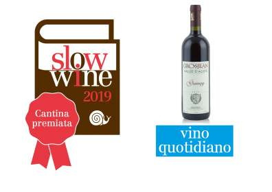Gamay 2017 – Vino Quotidiano secondo Slow Wine
